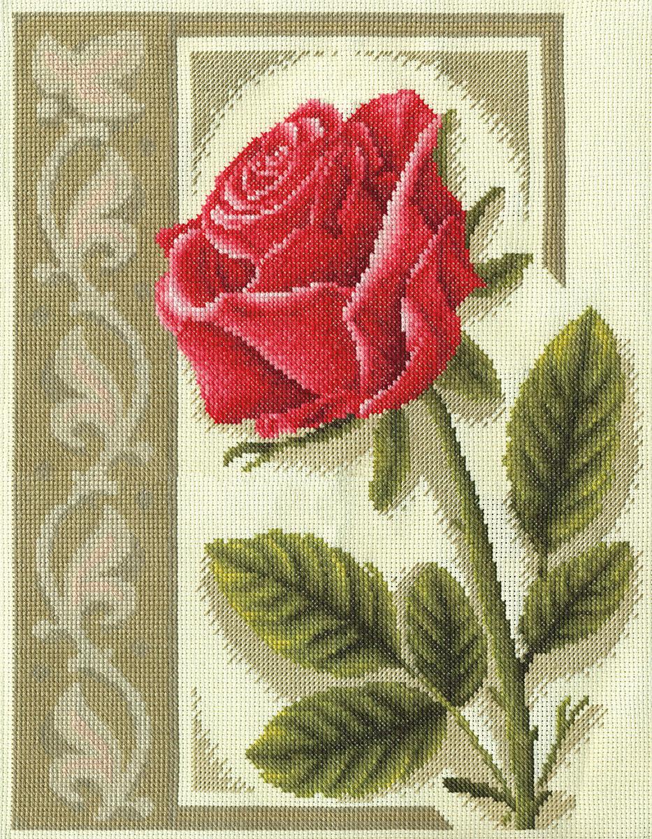 Ц-1266 Пурпурная роза